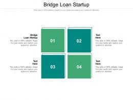 Bridge Loan Startup Ppt Powerpoint Presentation Styles Deck Cpb