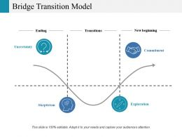 Bridge Transition Model Ppt Portfolio Guidelines