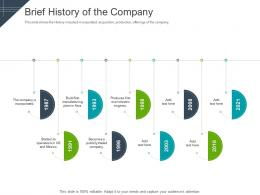Brief History Of The Company Raise Funding Short Term Bridge Financing Ppt Ideas