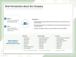 Brief Introduction About The Company Different Customer Ppt Powerpoint Presentation Format