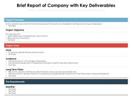 Brief Report Of Company With Key Deliverables