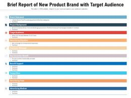 Brief Report Of New Product Brand With Target Audience