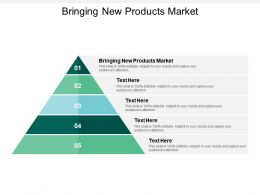 Bringing New Products Market Ppt Powerpoint Presentation File Show Cpb
