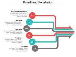 Broadband Penetration Ppt Powerpoint Presentation File Themes Cpb