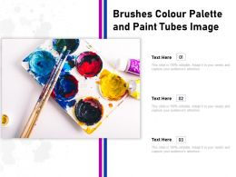 Brushes Colour Palette And Paint Tubes Image