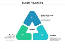 Budget Advertising Ppt Powerpoint Presentation Slides Professional Cpb