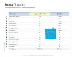 Budget Allocation Brand Upgradation Ppt Elements