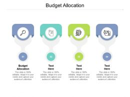 Budget Allocation Ppt Powerpoint Presentation Professional Example Introduction Cpb