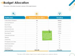 Budget Allocation Rebrand Ppt Powerpoint Presentation Infographics Examples