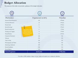 Budget Allocation Rebranding Approach Ppt Slides