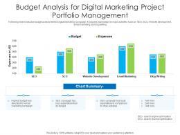 Budget Analysis For Digital Marketing Project Portfolio Management