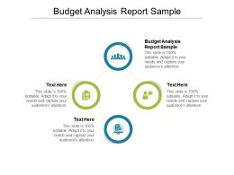 Budget Analysis Report Sample Ppt Powerpoint Presentation Pictures Model Cpb