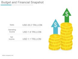 Budget And Financial Snapshot Powerpoint Shapes
