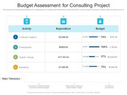 Budget Assessment For Consulting Project