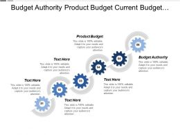 Budget Authority Product Budget Current Budget Customer Requirement