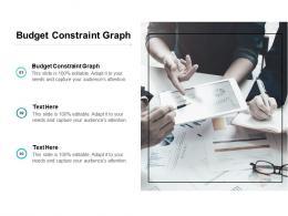 Budget Constraint Graph Ppt Powerpoint Presentation Ideas Show Cpb