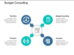 Budget Consulting Ppt Powerpoint Presentation File Smartart Cpb