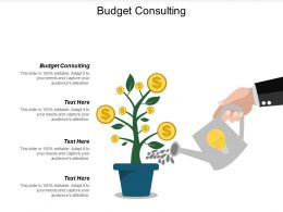 Budget Consulting Ppt Powerpoint Presentation Model Objects Cpb