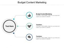 Budget Content Marketing Ppt Powerpoint Presentation File Inspiration Cpb