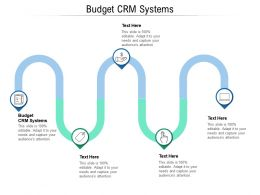 Budget CRM Systems Ppt Powerpoint Presentation Picture Cpb