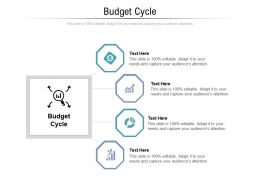 Budget Cycle Ppt Powerpoint Presentation Infographics Information Cpb