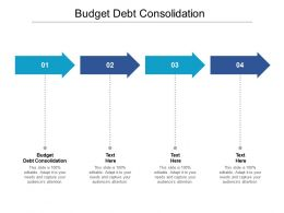 Budget Debt Consolidation Ppt Powerpoint Presentation Pictures Summary Cpb