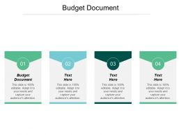 Budget Document Ppt Powerpoint Presentation File Example File Cpb