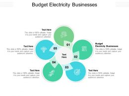 Budget Electricity Businesses Ppt Powerpoint Presentation Slides Professional Cpb