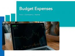 Budget Expenses Money Investment Icon Analysis Product Marketing