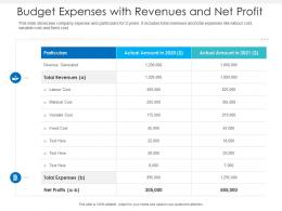 Budget Expenses With Revenues And Net Profit