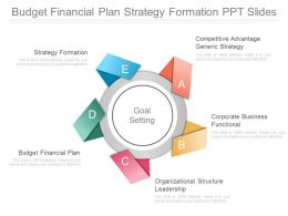 Budget Financial Plan Strategy Formation Ppt Slides