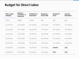 Budget For Direct Labor Ppt Powerpoint Presentation Gallery Show