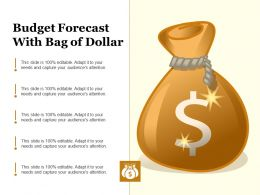 Budget Forecast With Bag Of Dollar
