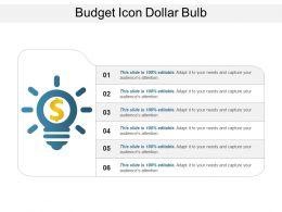 Budget Icon Dollar Bulb