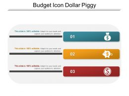 Budget Icon Dollar Piggy