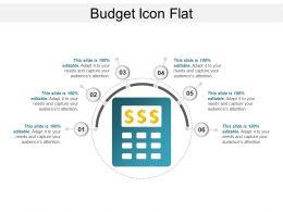 Budget Icon Flat