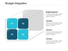 Budget Integration Ppt Powerpoint Presentation File Slide Portrait Cpb
