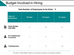 Budget Involved In Hiring Ppt Powerpoint Presentation File Example File