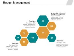 Budget Management Ppt Powerpoint Presentation File Shapes Cpb