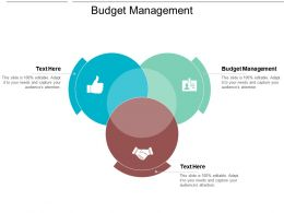 Budget Management Ppt Powerpoint Presentation Gallery Backgrounds Cpb