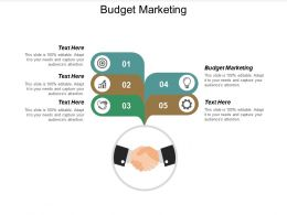 Budget Marketing Ppt Powerpoint Presentation Styles File Formats Cpb