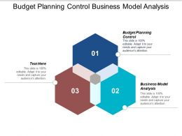 Budget Planning Control Business Model Analysis Solution Problem Cpb