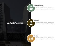 Budget Planning Ppt Powerpoint Presentation File Graphics Download Cpb
