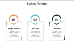 Budget Planning Ppt Powerpoint Presentation Ideas Example Cpb