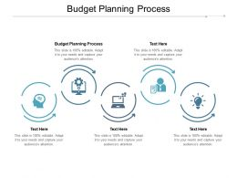 Budget Planning Process Ppt Powerpoint Presentation Show Examples Cpb