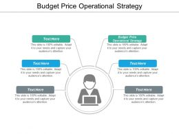 Budget Price Operational Strategy Ppt Powerpoint Presentation Icon Slides Cpb