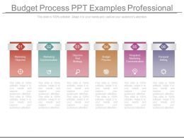 budget_process_ppt_examples_professional_Slide01