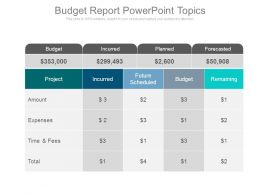 Budget Report Powerpoint Topics