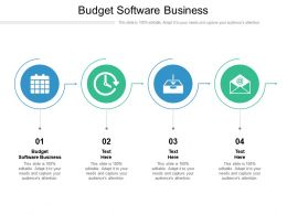 Budget Software Business Ppt Powerpoint Presentation Slides Cpb