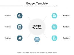 Budget Template Ppt Powerpoint Presentation File Example Cpb